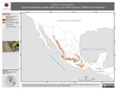 Mapa ilustrativo de Catharus occidentalis (zorzal mexicano) usando sitios con y sin clima extremo. Distribución Potencial