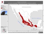 Mapa ilustrativo de Catharus aurantiirostris (zorzal pico anaranjado) residencia permanente. Distribución potencial.