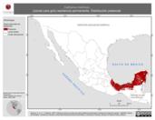 Mapa ilustrativo de Catharus minimus (zorzal cara gris) residencia permanente. Distribución potencial.