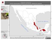 Mapa ilustrativo de Catherpes mexicanus (chivirín barranqueño) residencia permanente. Distribución potencial.