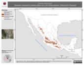 Mapa ilustrativo de Certhia americana (trepador americano) usando sitios con y sin clima extremo. Distribución Potencial