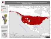 Mapa ilustrativo de Certhia americana (trepador americano) en época de invernación del Hemisferio Norte. Distribución potencial.