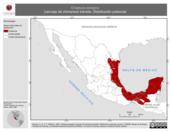 Mapa ilustrativo de Chaetura pelagica (vencejo de chimenea) tránsito. Distribución potencial.