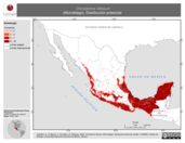 Mapa ilustrativo de Chiroderma villosum (Murciélago). Distribución potencial.