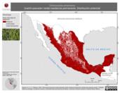 Mapa ilustrativo de Chloroceryle americana (martín-pescador verde) residencia permanente. Distribución potencial.