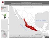 Mapa ilustrativo de Chlorostilbon auriceps (esmeralda mexicana) residencia permanente. Distribución potencial.