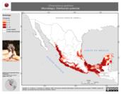 Mapa ilustrativo de Choeroniscus godmani (Murciélago). Distribución potencial.