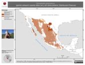 Mapa ilustrativo de Chondestes grammacus (gorrión arlequín) usando sitios con y sin clima extremo. Distribución Potencial