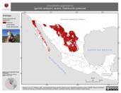 Mapa ilustrativo de Chondestes grammacus (gorrión arlequín) verano. Distribución potencial.