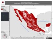 Mapa ilustrativo de Chordeiles acutipennis (chotacabras menor) verano. Distribución potencial.