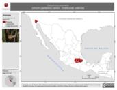 Mapa ilustrativo de Cistothorus palustris (chivirín pantanero) verano. Distribución potencial.