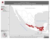 Mapa ilustrativo de Cistothorus platensis (chivirín sabanero) verano. Distribución potencial.