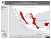Mapa ilustrativo de Coccyzus americanus (cuclillo pico-amarillo) verano. Distribución potencial.