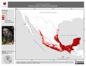 Mapa ilustrativo de Coendu mexicanus (Puerco espín). Distribución potencial.
