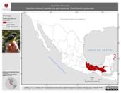 Mapa ilustrativo de Coereba flaveola (reinita-mielera) residencia permanente. Distribución potencial.