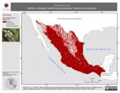 Mapa ilustrativo de Columbina inca (tórtola colalarga) residencia permanente. Distribución potencial.