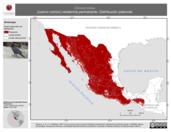 Mapa ilustrativo de Corvus corax (cuervo común) residencia permanente. Distribución potencial.