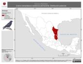 Mapa ilustrativo de Corvus imparatus (cuervo tamaulipeco) residencia permanente. Distribución potencial.