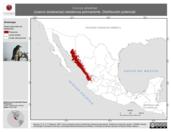 Mapa ilustrativo de Corvus sinaloae (cuervo sinaloense) residencia permanente. Distribución potencial.