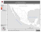 Mapa ilustrativo de Cratogeomys goldmani (Tuza). Distribución potencial.