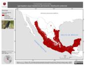 Mapa ilustrativo de Crotophaga sulcirostris (garrapatero pijuy) residencia permanente. Distribución potencial.