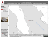 Mapa ilustrativo de Crotalus catalinensis (Víbora cascabel muda). Área de distribución potencial. La proyección citada, es exclusiva para el diseño de esta imagen.