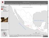 Mapa ilustrativo de Crotalus pusillus (Víbora cascabel de Tancítaro). Área de distribución potencial. La proyección citada, es exclusiva para el diseño de esta imagen.