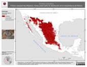 Mapa ilustrativo de Crotalus scutulatus (Víbora cascabel del Altiplano). Área de distribución potencial. La proyección citada, es exclusiva para el diseño de esta imagen.