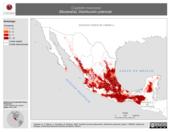 Mapa ilustrativo de Cryptotis mexicana (Musaraña). Distribución potencial.