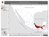 Mapa ilustrativo de Crypturellus boucardi (tinamú jamuey) residencia permanente. Distribución potencial.
