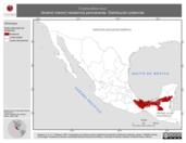 Mapa ilustrativo de Crypturellus soui (tinamú menor) residencia permanente. Distribución potencial.