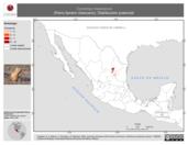Mapa ilustrativo de Cynomys mexicanus (Perro llanero mexicano). Distribución potencial.
