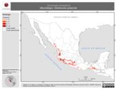 Mapa ilustrativo de Cynomops mexicanus (Murciélago). Distribución potencial.