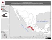 Mapa ilustrativo de Cypseloides storeri (vencejo frente blanca) residencia permanente. Distribución potencial.