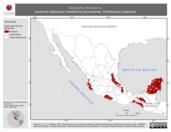 Mapa ilustrativo de Dactylortyx thoracicus (codorniz silbadora) residencia permanente. Distribución potencial.