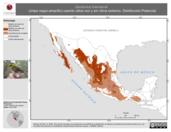 Mapa ilustrativo de Dendroica townsendi (chipe negro-amarillo) usando sitios con y sin clima extremo. Distribución Potencial