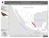 Mapa ilustrativo de Dendrortyx barbatus (codorniz-coluda veracruzana) residencia permanente. Distribución potencial.
