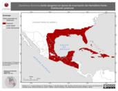 Mapa ilustrativo de Dendroica dominica (tordo sargento) en época de invernación del Hemisferio Norte. Distribución potencial.