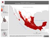 Mapa ilustrativo de Desmodus rotundus (Murciélago vampiro). Distribución potencial.
