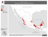 Mapa ilustrativo de Diclidurus albus (Murciélago blanco). Distribución potencial.
