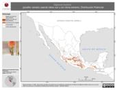 Mapa ilustrativo de Diglossa baritula (picaflor canelo) usando sitios con y sin clima extremo. Distribución Potencial