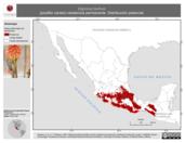 Mapa ilustrativo de Diglossa baritula (picaflor canelo) residencia permanente. Distribución potencial.