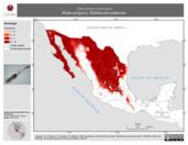 Mapa ilustrativo de Dipodomys merriami (Rata canguro). Distribución potencial.