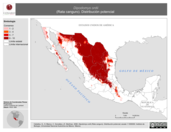 Mapa ilustrativo de Dipodomys ordii (Rata canguro). Distribución potencial.