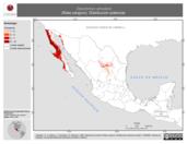 Mapa ilustrativo de Dipodomys simulans (Rata canguro). Distribución potencial.