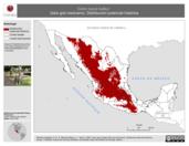 Mapa ilustrativo de Canis lupus baileyi (lobo gris mexicano). Distribución potencial histórica. La proyección citada, es exclusiva para el diseño de esta imagen.