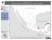 Mapa ilustrativo de Doricha eliza (colibrí cola hendida) residencia permanente. Distribución potencial.