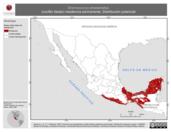 Mapa ilustrativo de Dromococcyx phasianellus (cuclillo faisán) residencia permanente. Distribución potencial.