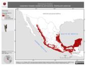 Mapa ilustrativo de Dryocopus lineatus (carpintero lineado) residencia permanente. Distribución potencial.