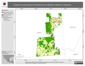 Mapa ilustrativo de Estado de conservación de la Reserva de la Biosfera Calakmul, Campeche